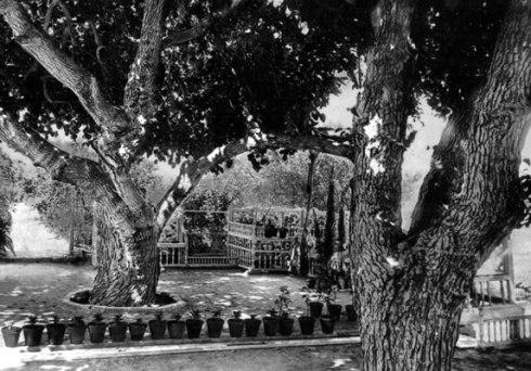 ridvan-garden-bahaullah-retreat